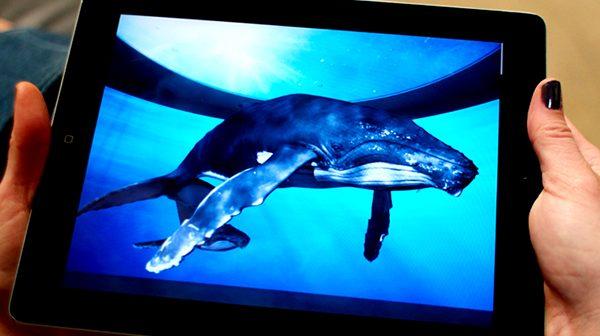 Aquarium of the Pacific ipad
